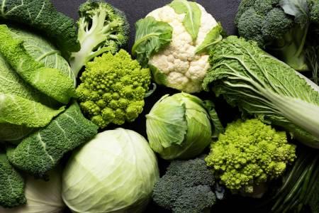 Svårt att smälta fibrer - Super Synbiotics