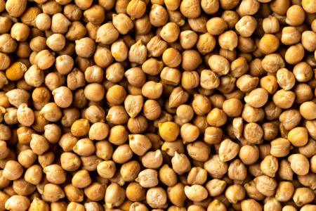 Vikten av kortkedjiga fettsyror - Super Synbiotics