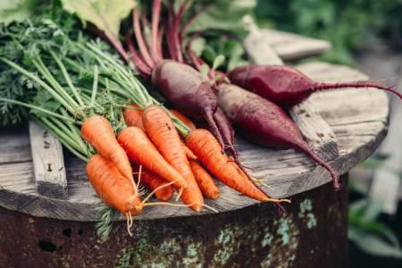 antiinflammatorisk mat i säsong - Super Synbiotics