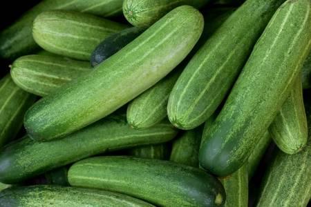 Tarmfloran och matsmältningen - Super Synbiotics