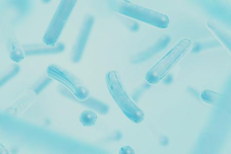 Vilka mjölksyrabakterier fungerar? - Super Synbiotics